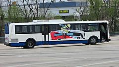 WMATA Metrobus 1993 Flxible Metro D #9704