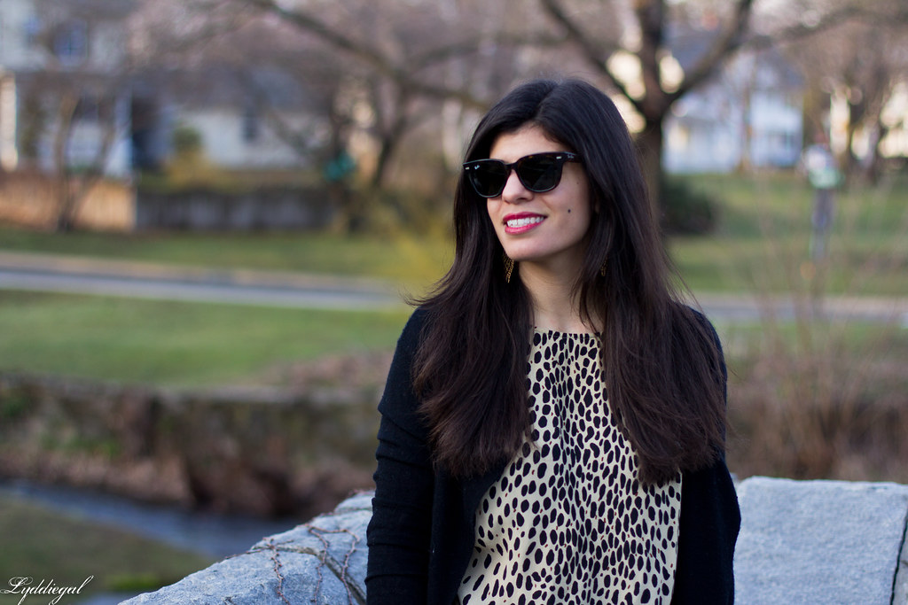 leopard tunic, black cardigan, coach bag-7.jpg