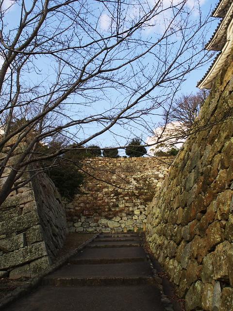 お城に行くといつも思う。どうやってこの石垣を作ってその中に土をもってその上に大きな建物を立てたのかがわからない。