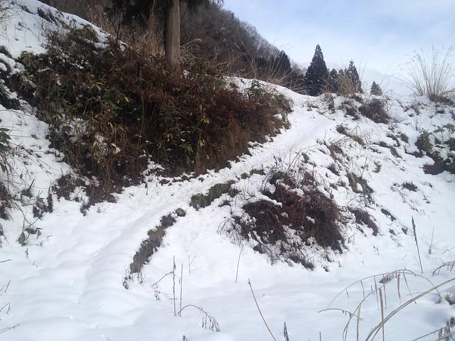 土蔵岳 支尾根への道