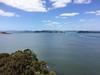 Doves Bay Walk