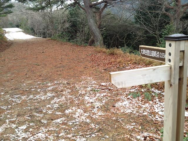 池田山 大津谷登山道 終点まで0.55km