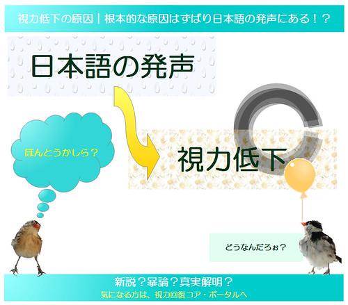 視力回復のために知りたい眼のメカニズム|独自まとめその18|視力低下の主たる要因|一重まぶた以上の根本的な原因はずばり日本人の日本語の発声にある!?|真・視力回復法~視力回復コア・ポータル