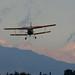 Antonov An-2 by linda m bell