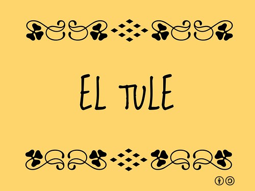 Buzzword Bingo: El Tule