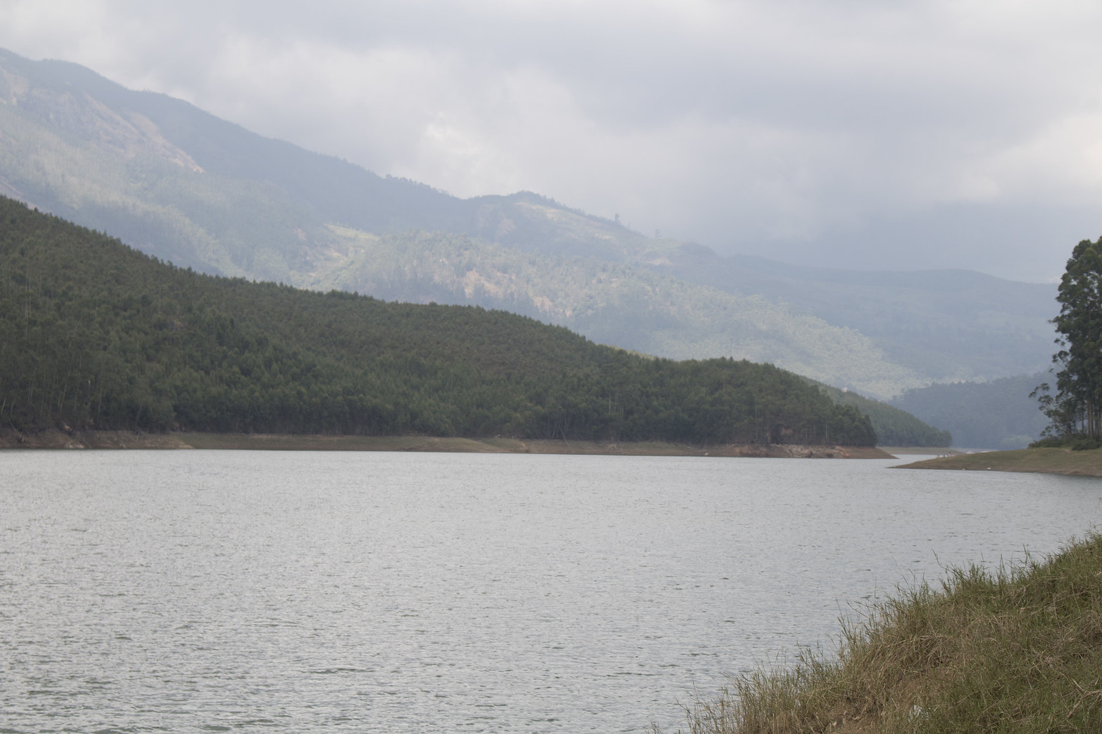 Mattupatti Dam (1)