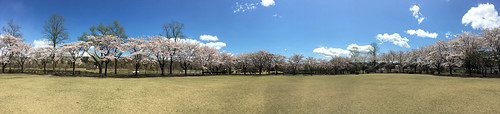 那珂川河畔公園