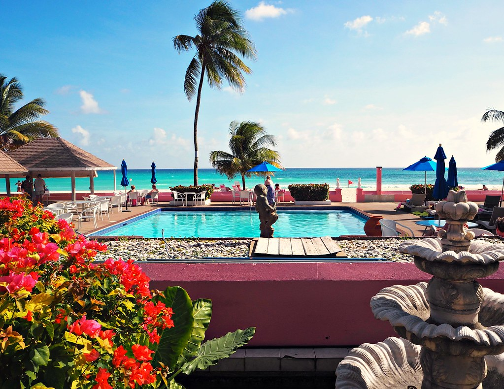 The Little Magpie Southern Palms Barbados Review 10