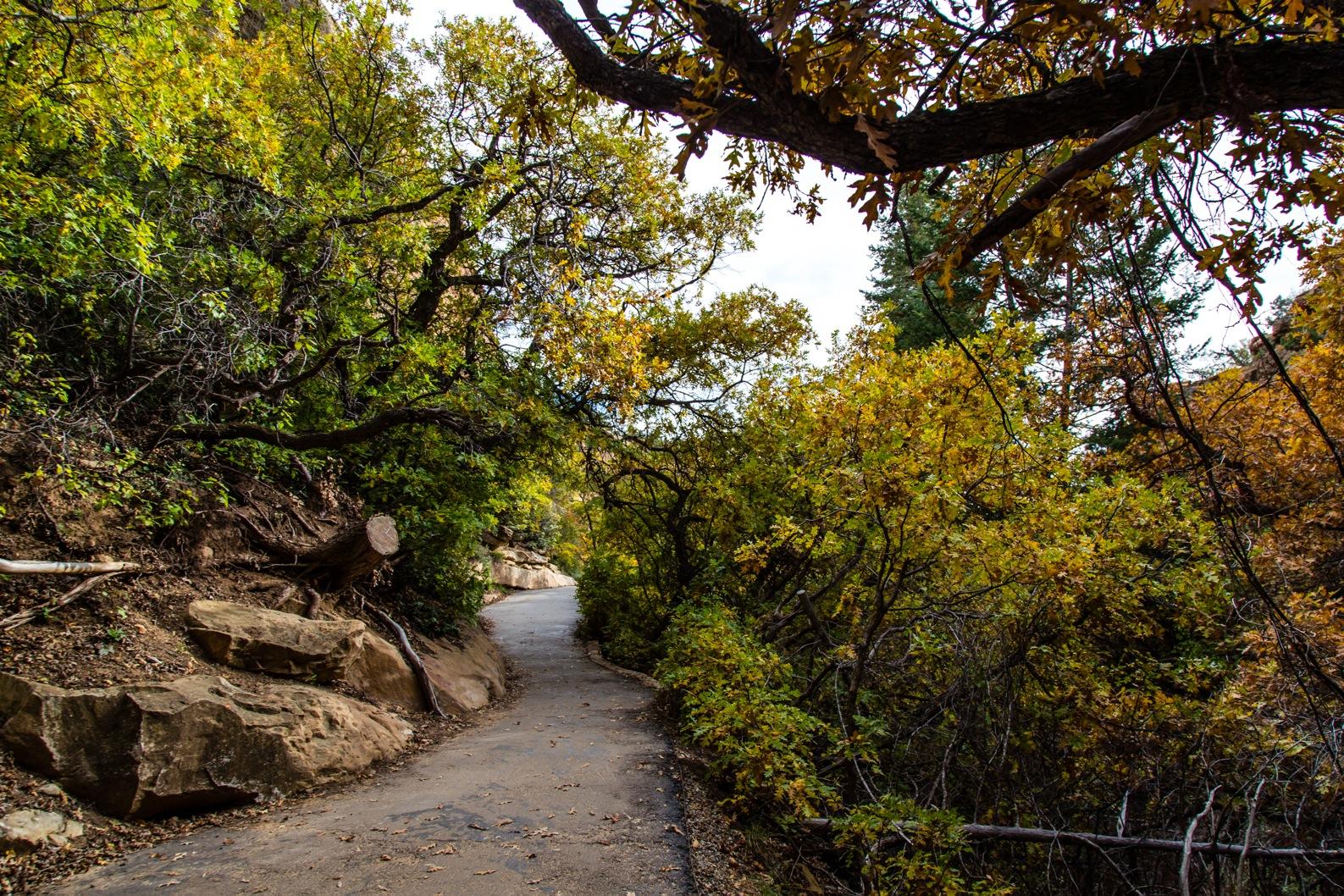 Mesa Verde-7134
