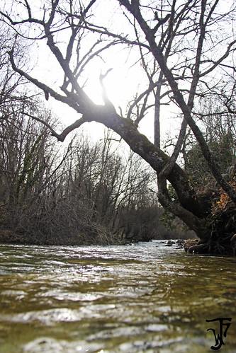 A la deriva por el río