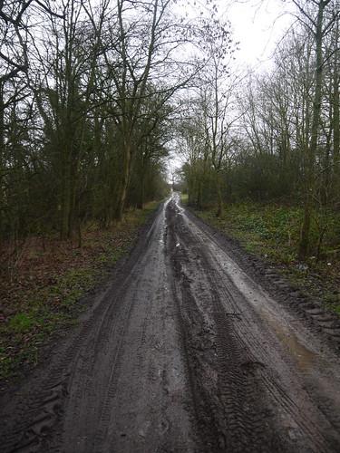 Ridgeway Lane