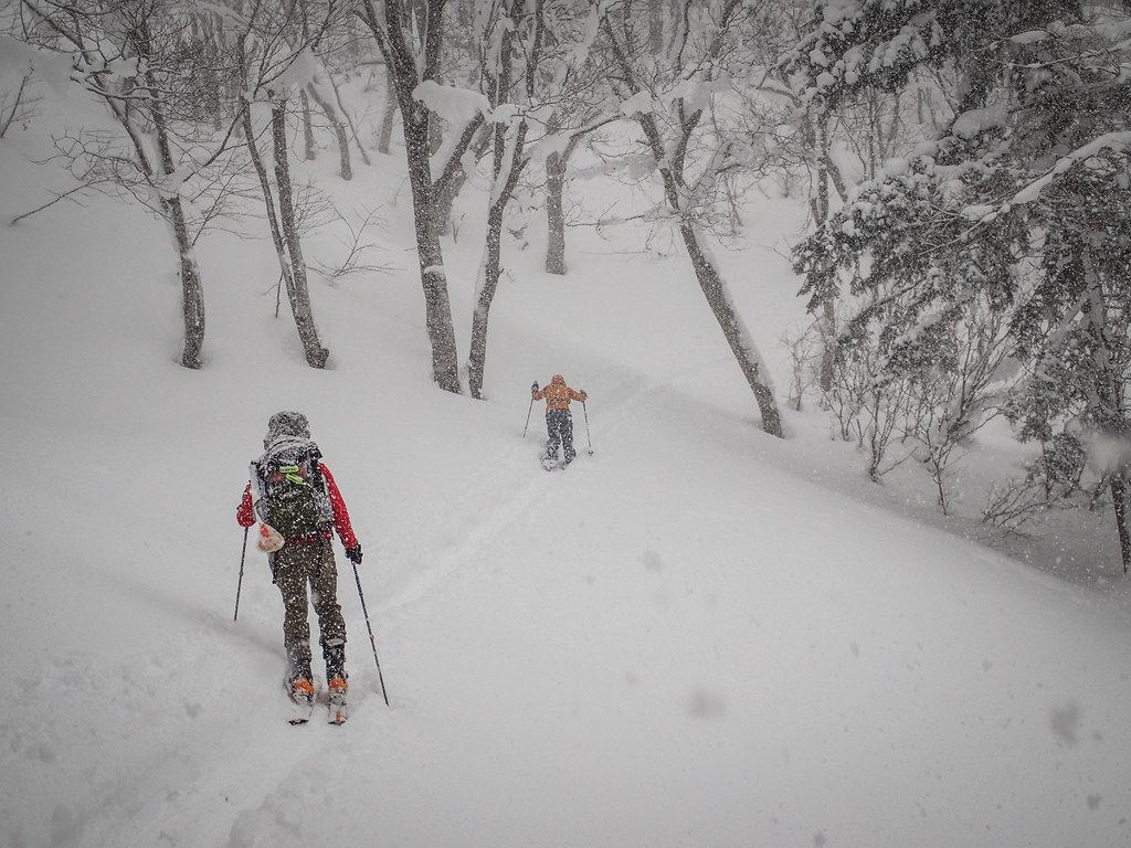 Skinning up to Ginreiso Hut near Mt. Haruka (Hokkaido, Japan)
