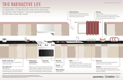Una vida radiactiva