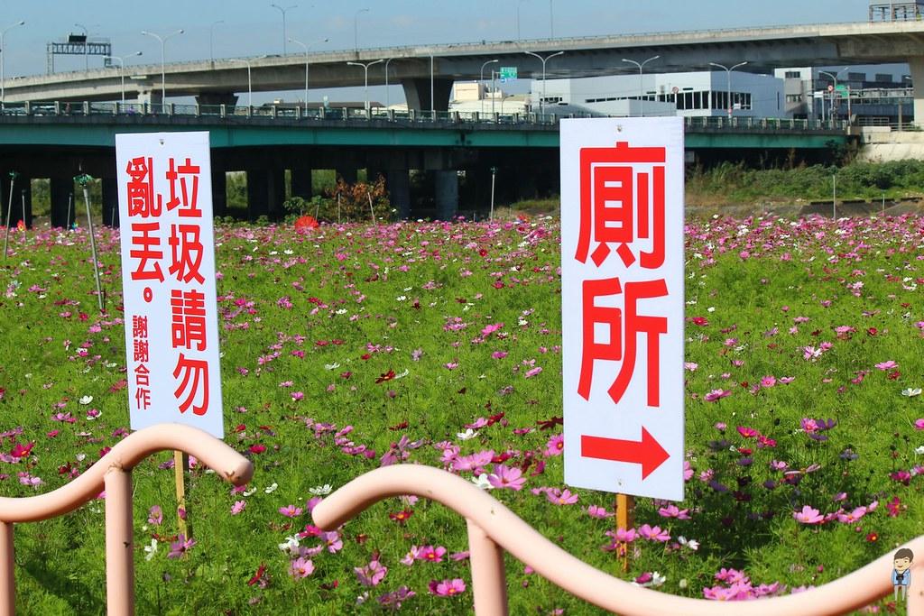 大里橋花海 (2)