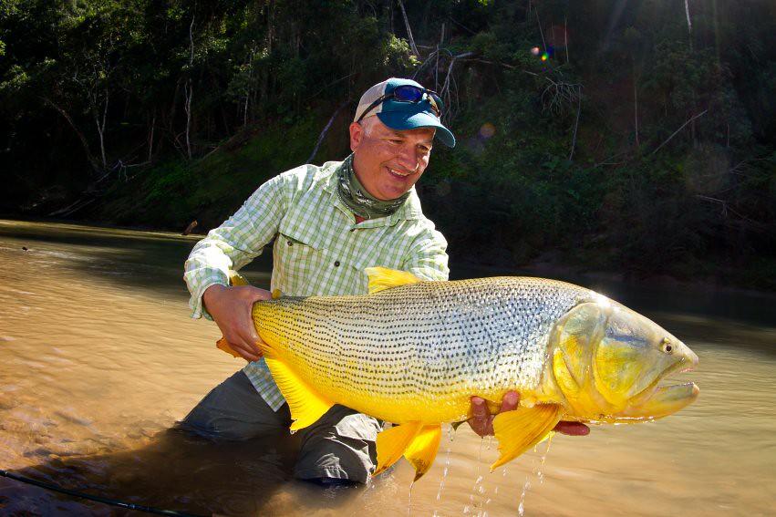 golden dorado bolivia fly fishing