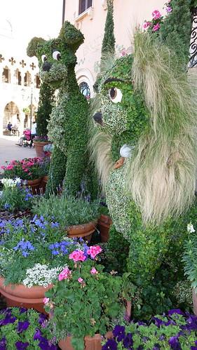 Epcot Flower and Garden Festival 2016 (311)