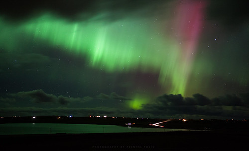 Birthday Aurora
