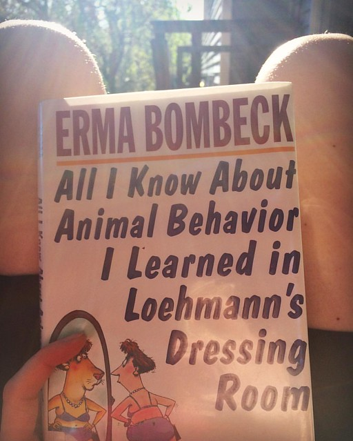 Reading Erma Bombeck in the sunshine...gee, I feel like a teenager again. 🌞