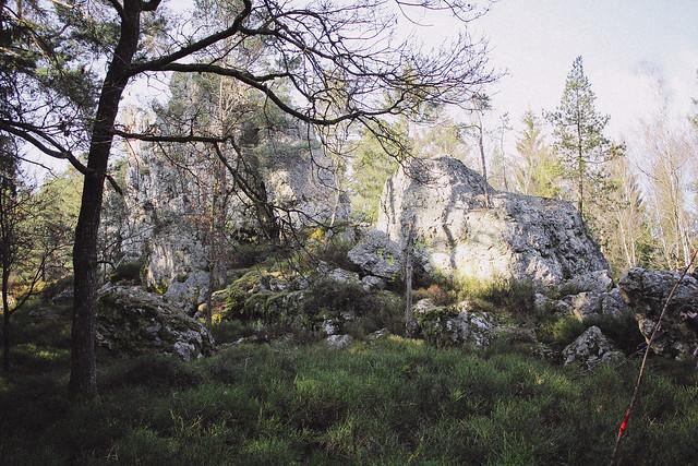 IMG_4145BedC, The Curly Head, thecurlyhead, Amelie, Bayerischer Wald, Viechtach, Großer Pfahl, Hiking, Wandern, Landschaftsfotografie, Photography