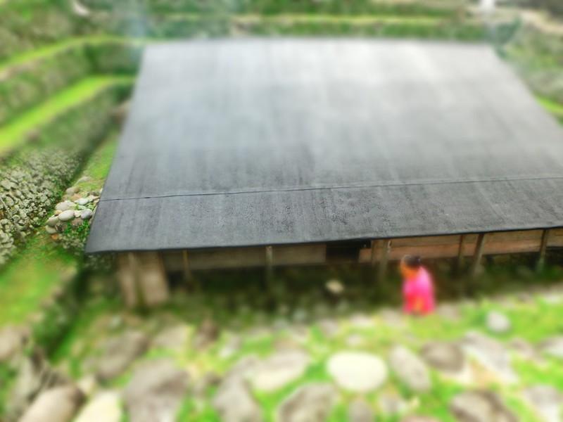 環島蘭嶼。傳統地下屋  (43)