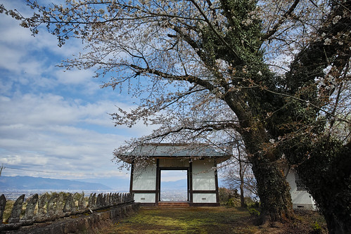 Denshiin temple