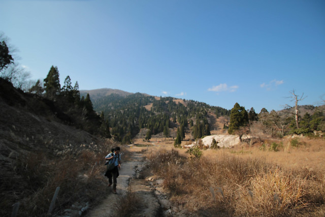 20141122-武奈ヶ岳&京都ライトアップ-0411.jpg