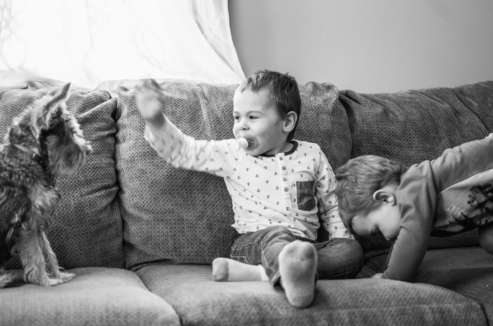 Playing on the couch