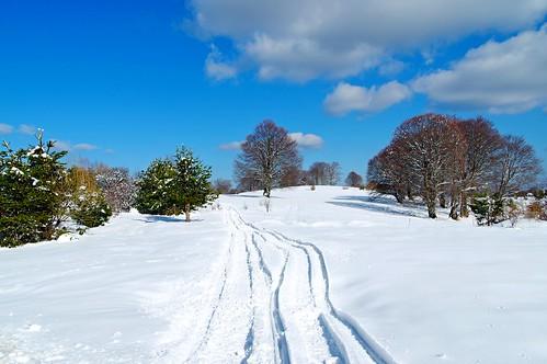 mountain snow landscape outdoor bulgaria osogovo