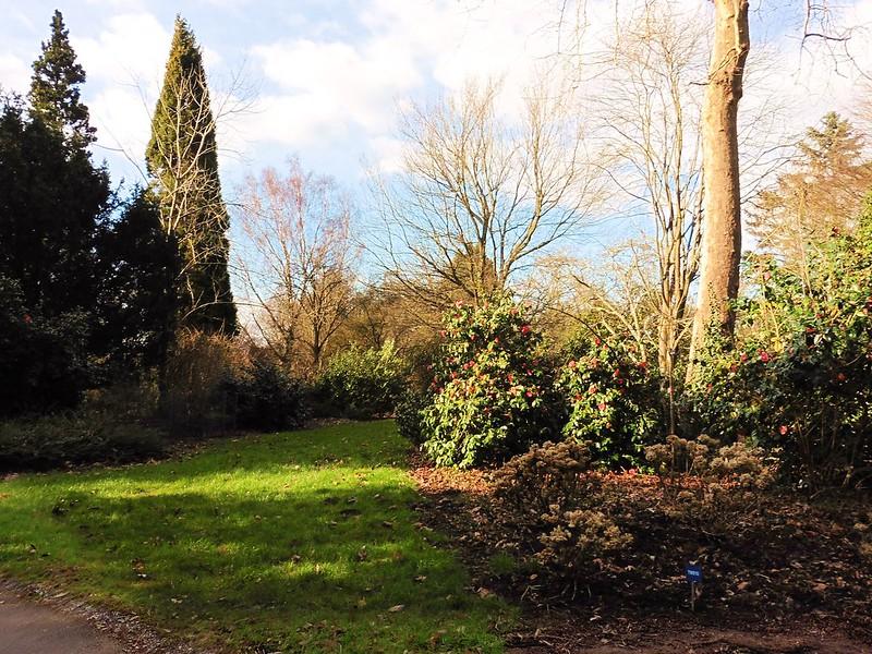 Hillier Gardens