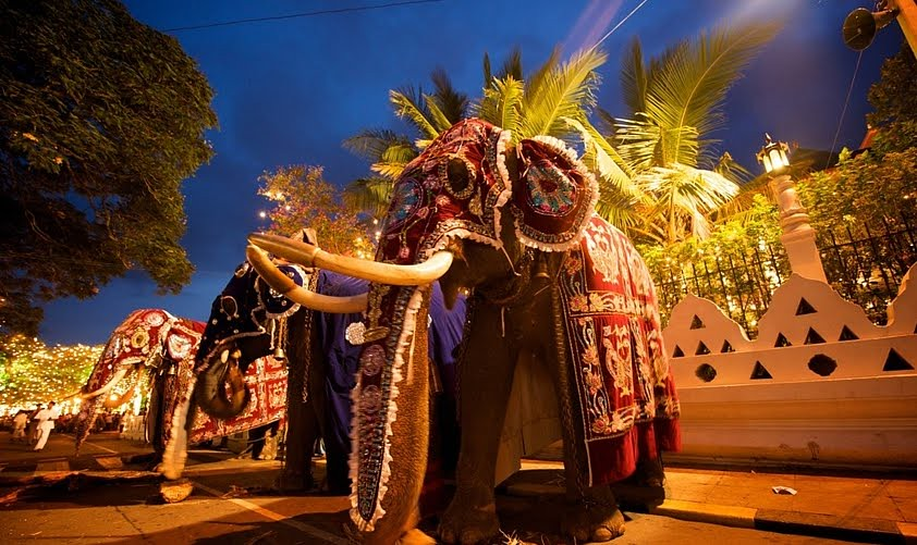 new year festival in sri lanka