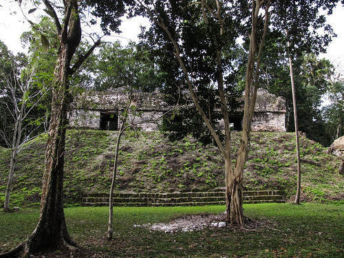 Tikal: la Place des Sept Temples, un endroit important de la vie socio-politique