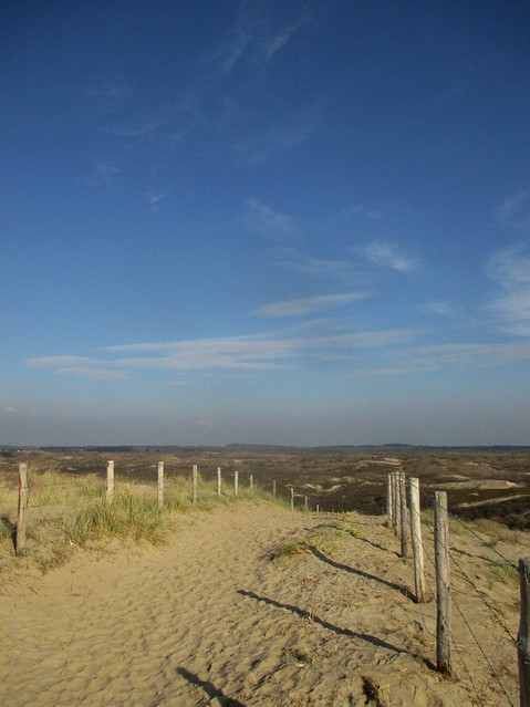 Zuid-Kennemerland National Park from the Zandvoort dykes