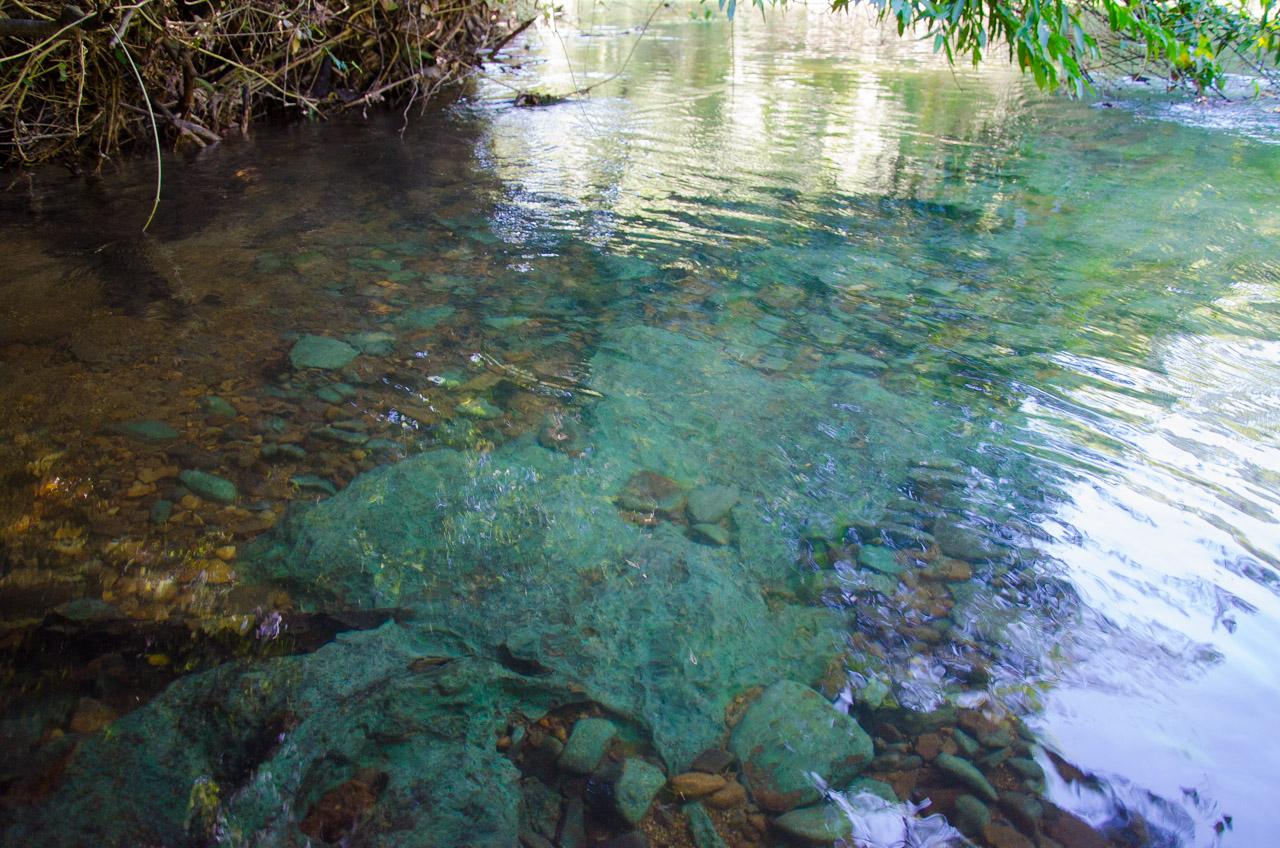 Una muestra de como se ve exactamente el suelo del arroyo Tagatiya a través de las aguas. Las personas que llegan a este lugar podrán ver directamente las rocas, el suelo, los peces sin ninguna dificultad. (Elton Núñez)