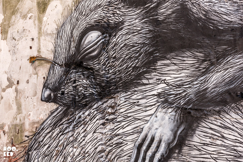 Close up of street artist ROA's animal mural in Ostend, Belgium. ©2016_MARK_RIGNEY