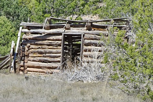 42116-03, Abandoned New Mexico Log Building