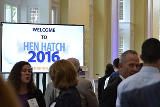 Hen Hatch showcases entrepreneurs' visions