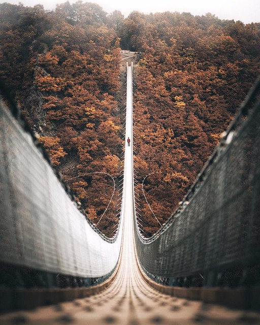 @EarthPix : Geierlay rope suspension bridge, Germany | Photo by Johannes H (@pangeaproductions on IG) https://t.co/VExJyxhLkZ