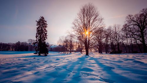 winter snow landscape belgique hiver be neige paysage hdr panoramique marchin 7d2 régionwallonne 7dmarkii