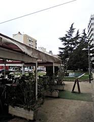 QuintoPino_DSCN3594
