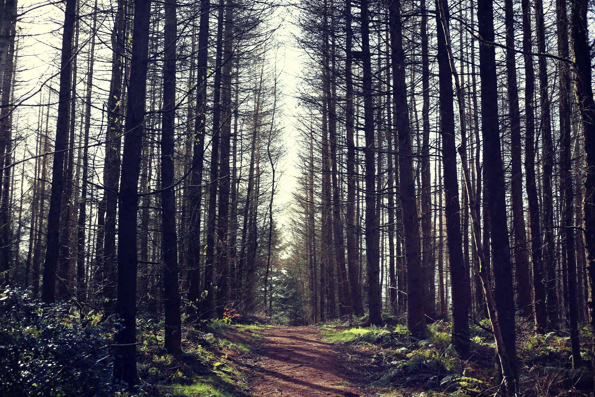 irish lifestyle blog