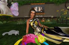 Fantasy Faire, Bright Haven, 28/4/16