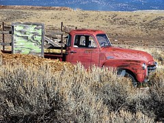 Red Truck in field