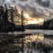 Tarn Hows by asheers