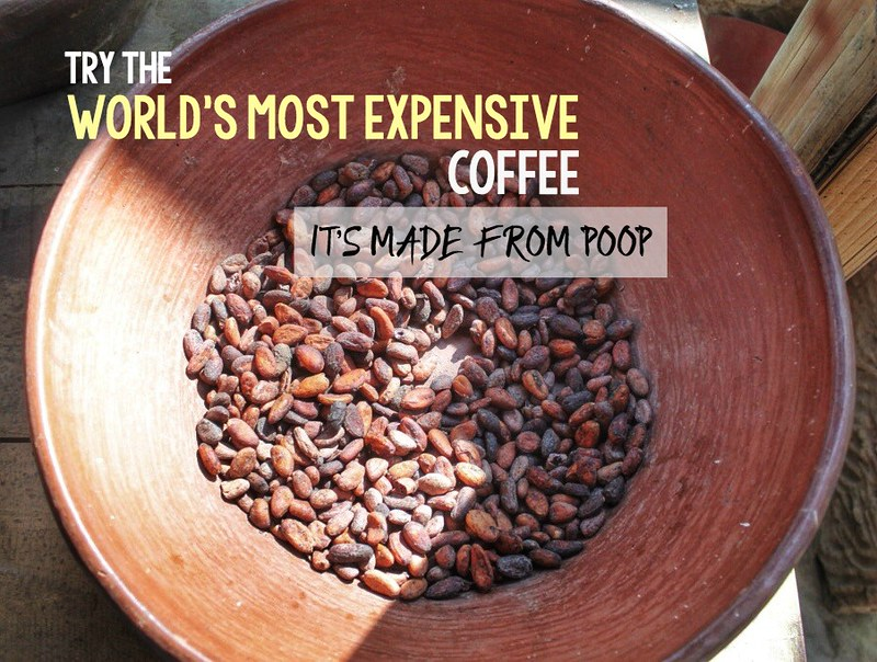 The world's most expensive coffee