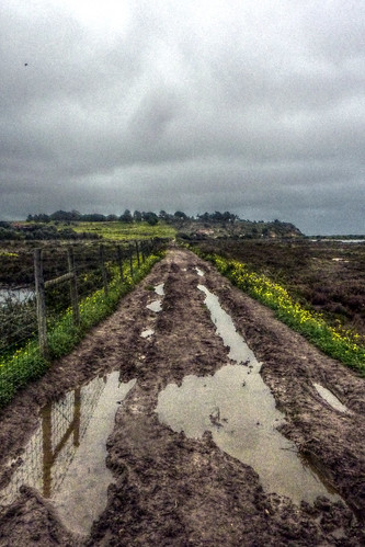 Portugal in February! Muddy lane near Alvor