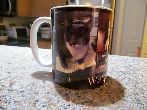 Cats on a mug