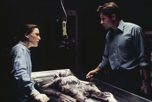 The X-Files - screenshot 2