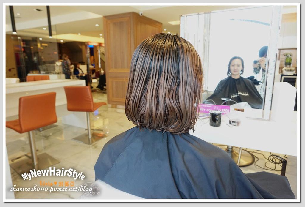 HappyHairTon短髮+墨綠色染髮 - 14
