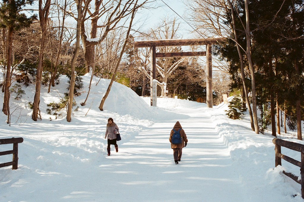 北海道神宮 Japan / Kodak ColorPlus / Nikon FM2 2016/02/01 北海道神宮,第一次來這裡,看到樹和雪的景,很美。  在來北海道之前,我都以為下雪的地方是看不到太陽的,但我好像白癡,太陽都一直存在著!  Nikon FM2 Nikon AI AF Nikkor 35mm F/2D Kodak ColorPlus ISO200 8265-0003 Photo by Toomore