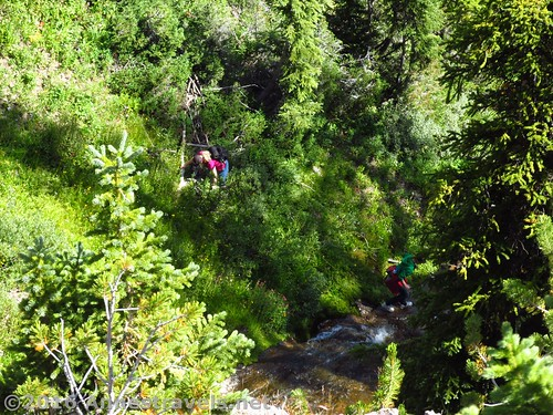 Scrambling on the Forest Route around Dundee Falls, Shoshone National Forest, Wyoming